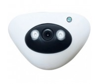 AM15-200E IP Mini Array Camera, Пластик, 2 MP 1080P, 3,6mm линза, IR-15m